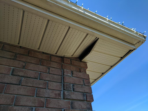 racoon entry point in soffit installation